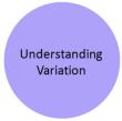 Understanding variation